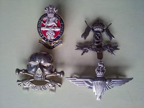 My Collar & Cap Badge Collection