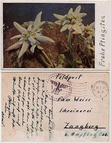 My Favorite feldpost letter in my collection - With eastern front flower
