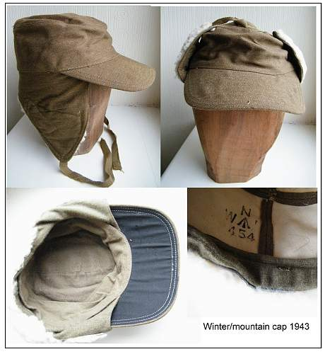 Click image for larger version.  Name:winter cap montage s.jpg Views:107 Size:250.7 KB ID:426853
