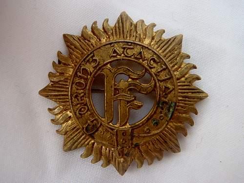 Rare female THE DUBLIN BRIGADE cap badge..