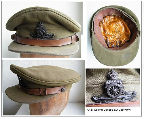 Click image for larger version.  Name:Ra Lt Col SD cap montage m.jpg Views:53 Size:278.0 KB ID:549182