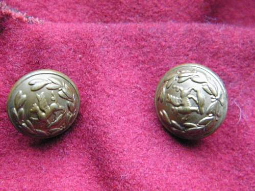 Click image for larger version.  Name:SWB mess jacket buttons.jpg Views:81 Size:229.5 KB ID:581812
