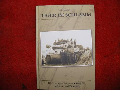 Click image for larger version.  Name:tigers iin the mud 002.jpg Views:40 Size:322.3 KB ID:634098