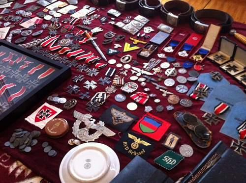 Modest Motley Collection