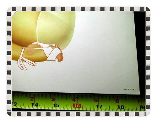Click image for larger version.  Name:War Art & Pinup GirlsWar Art & Pinups 013.jpg Views:17 Size:42.7 KB ID:676455