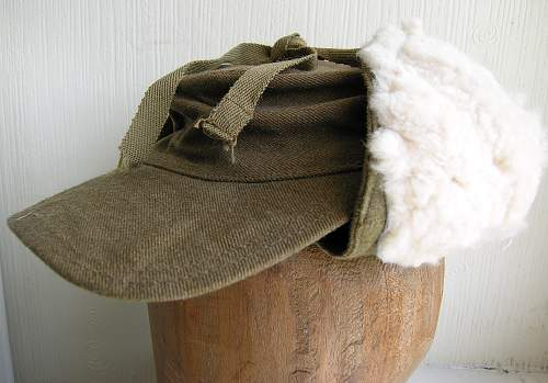 Click image for larger version.  Name:winter cap.jpg Views:33 Size:221.0 KB ID:699992