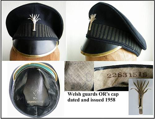 Click image for larger version.  Name:welsh guards cap montage m.jpg Views:21 Size:117.4 KB ID:733194