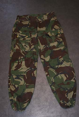 Click image for larger version.  Name:camo 004.jpg Views:283 Size:316.3 KB ID:774491
