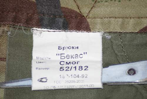 Click image for larger version.  Name:camo 005.jpg Views:74 Size:335.4 KB ID:774492
