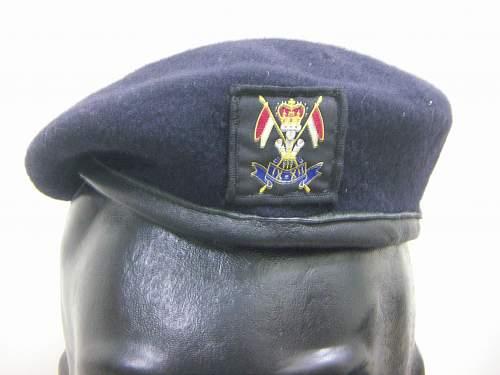 Click image for larger version.  Name:Brit 9-12th Lancers beret 1.jpg Views:177 Size:200.3 KB ID:780617