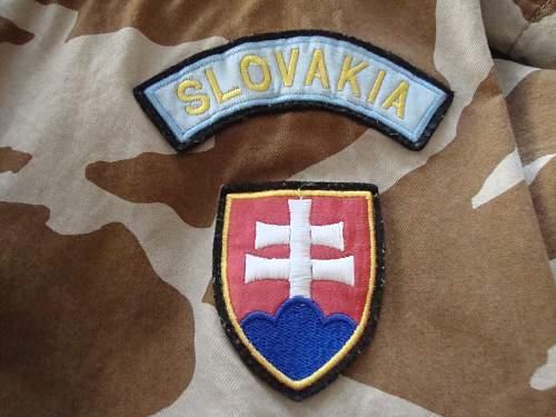 Click image for larger version.  Name:Slovakian Desert Jacket 004.jpg Views:58 Size:227.5 KB ID:799935