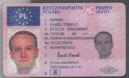 Fake Dealer Back  Pawel Nowak