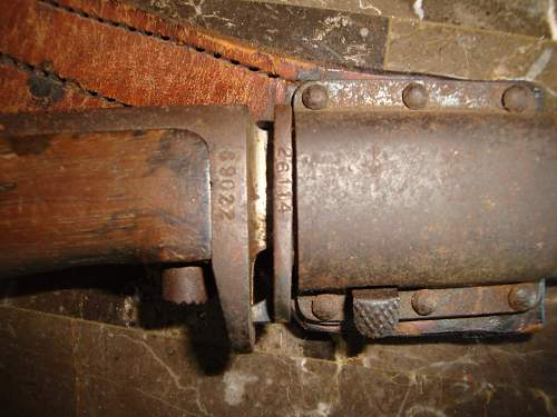 Does anyone know what type of bayonet this is