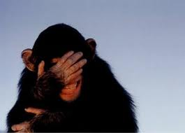 Name:  chimp.png Views: 142 Size:  42.0 KB