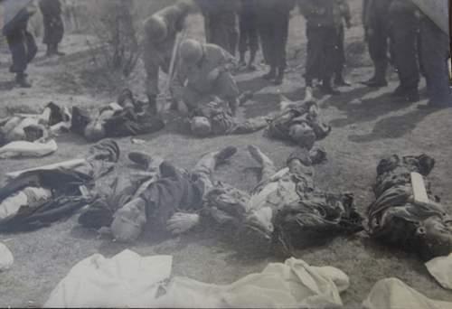 Soldier's Album--Liberation of Buchenwald