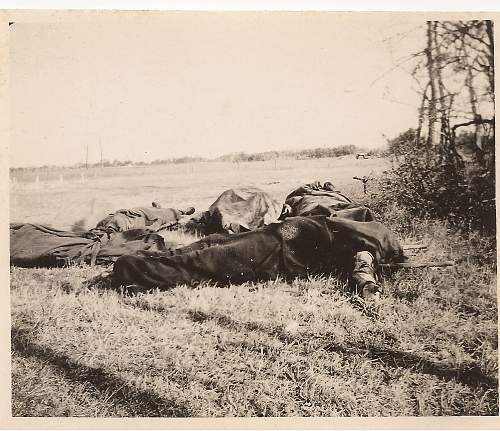 Click image for larger version.  Name:d-day..german dead....jpg Views:1609 Size:260.2 KB ID:197125