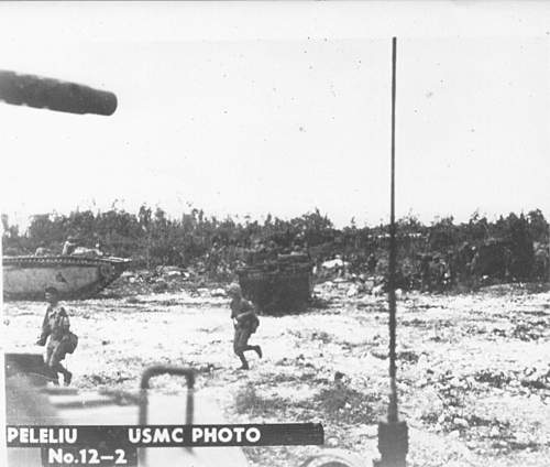 Click image for larger version.  Name:Peleliu 12-2.jpg Views:612 Size:107.4 KB ID:396275