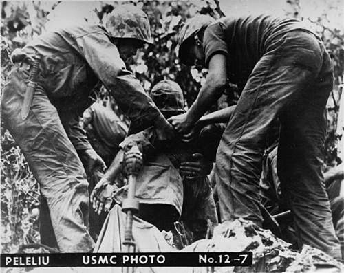 Click image for larger version.  Name:Peleliu 12-7.jpg Views:1736 Size:145.1 KB ID:396277