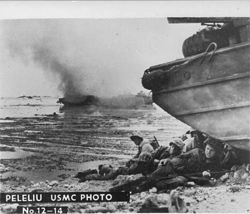 Click image for larger version.  Name:Peleliu 12-14.jpg Views:2058 Size:124.7 KB ID:396278
