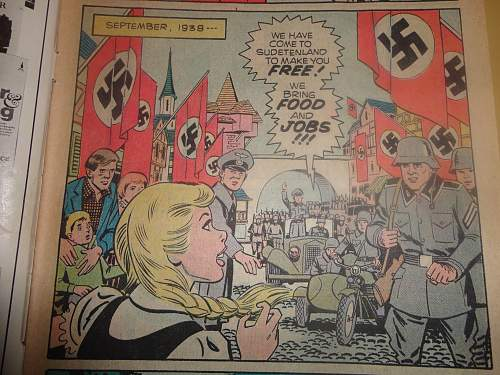 The Girl Who Loved The Swastika