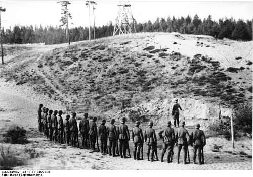 Click image for larger version.  Name:Bundesarchiv_Bild_101I-212-0221-08,_Russland-Nord,_Erschießung_von_Partisanen.jpg Views:2773 Size:83.4 KB ID:186388