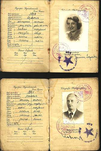 Some help with Russian in an old passport...
