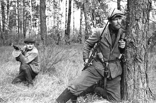 Click image for larger version.  Name:Partisans operating in the forests of Belarus.jpg Views:336 Size:130.3 KB ID:48425