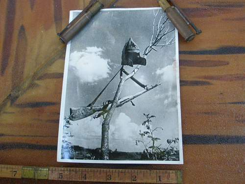 Budenovka & Mosin-Nagant in a Tree Press Pic