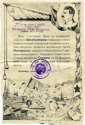Click image for larger version.  Name:Roza Grigorievna Gindina, Pila.jpg Views:47 Size:340.9 KB ID:825835