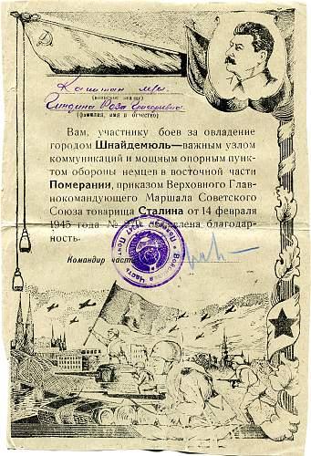 Click image for larger version.  Name:Roza Grigorievna Gindina, Pila.jpg Views:57 Size:340.9 KB ID:825835