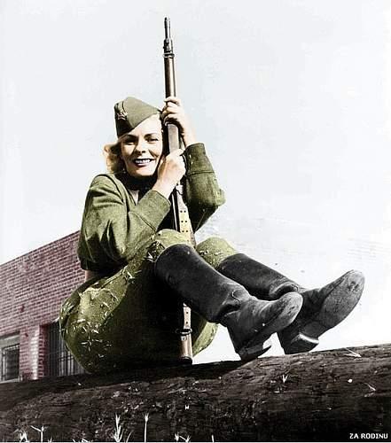 Click image for larger version.  Name:Leningrad Sniper.jpg Views:29 Size:99.9 KB ID:853817