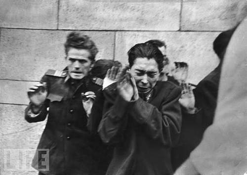 Click image for larger version.  Name:execution-by-hungarian-freedom-fighters-of-young-officers-of-the-secret-police-budapest-1956-by.jpeg Views:104 Size:51.2 KB ID:557816