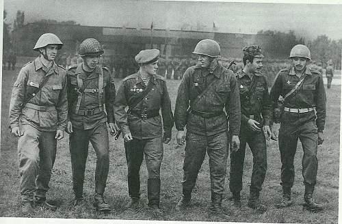 Any illustations of 1980s cold war era  WP uniforms  ?