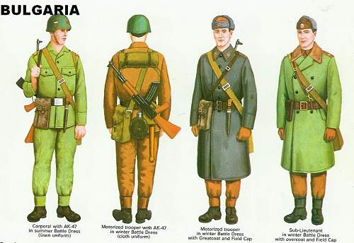 Bulgarian Soldier 1970's era Display for opinions