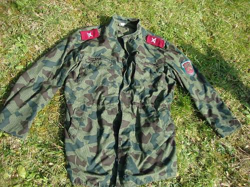 Click image for larger version.  Name:Bulgarian Splinter Jacket 002.jpg Views:184 Size:245.9 KB ID:943749