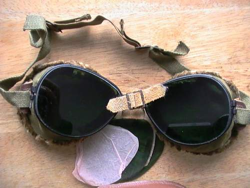US mountian troop goggles