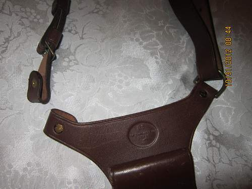 Pistol Holster , what fits in this?