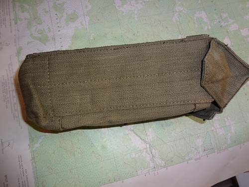 P44 ammo pouch w/frog
