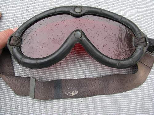 Canadian Polaroid Goggles
