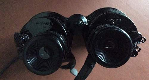 What binoculars are these please?