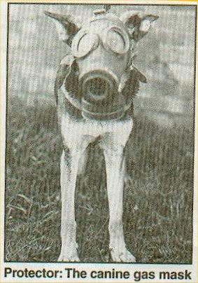 WW2 British Dog Respirator/Gas Mask