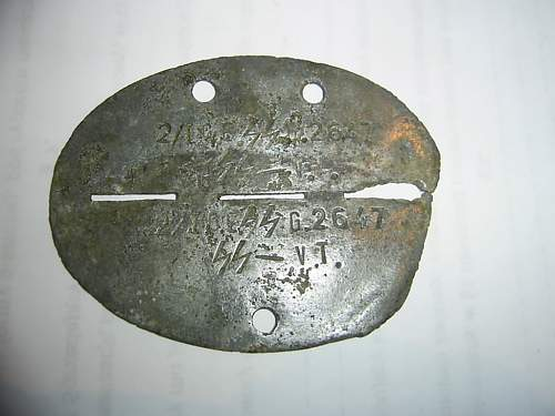 Another SS Dog Tag - maybe...