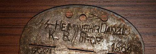 SS Heimwehr Danzig dogtag ?