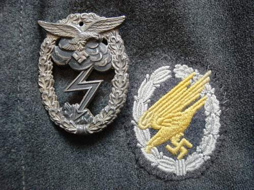 Click image for larger version.  Name:Cloth FJ badge and Ground combat badge. 1.jpg Views:15 Size:53.8 KB ID:848657
