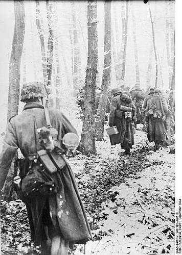 Click image for larger version.  Name:21. ardennes dans le dos.jpg Views:443 Size:66.0 KB ID:120969