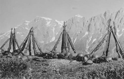 Click image for larger version.  Name:GEBIRGS DIVISION .GERMAN MOUNTAIN TROOPS 106.jpg Views:10452 Size:245.5 KB ID:192905