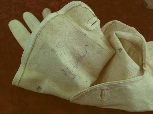 Click image for larger version.  Name:gloves 3.jpeg Views:87 Size:178.1 KB ID:341283