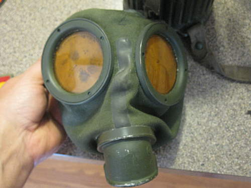 Gas mask and case