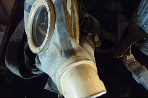 Did I stumble upon a Normandy cammo gasmask Kanister??????