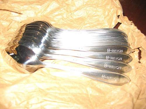 SS Spoons